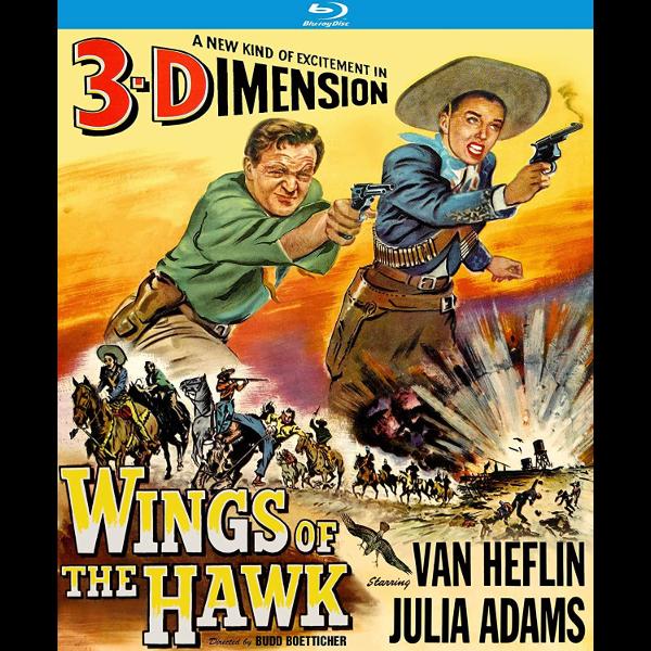 Wings of the Hawk 3-D